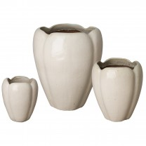 Set of 3 Foxglove Planters